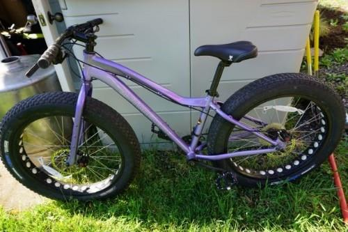 2 Fat Bikes Gorgenet Classifieds Xx